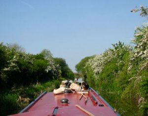 Cruising into the Aylesbury Arm