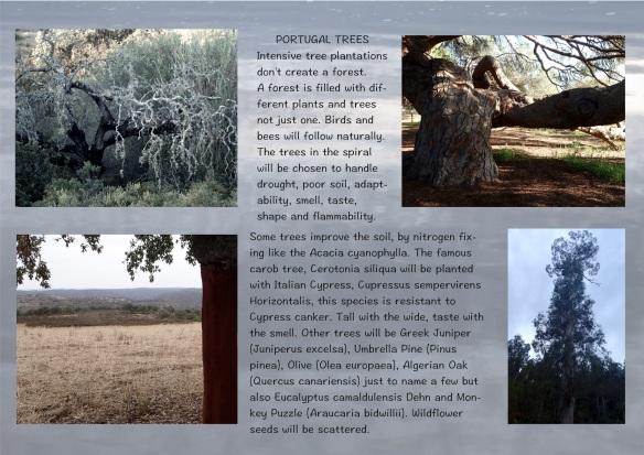 slide8PortugalTrees