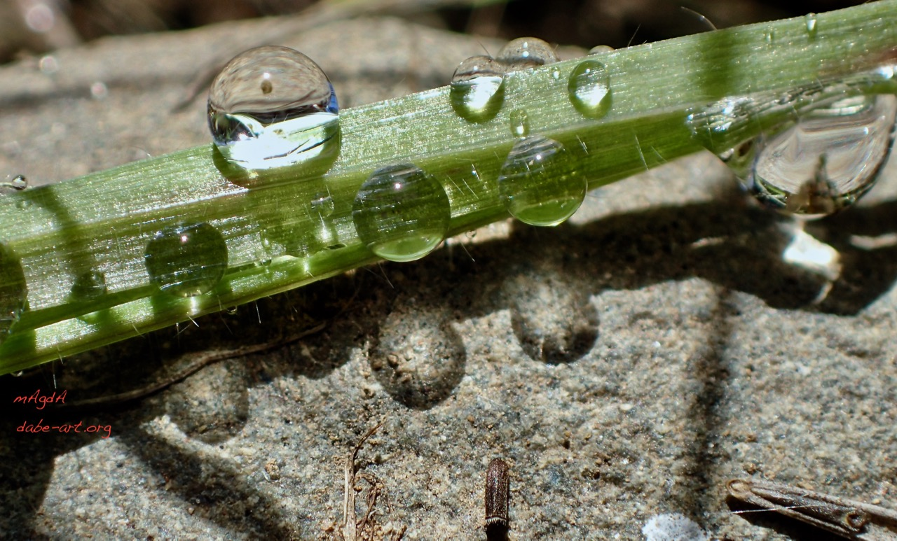 blog2dropreflection